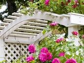 SOKRATES Sedlácká barva je extrémně penetrující krycí barva na dřevo určená pro hobby i profesionální použití.
