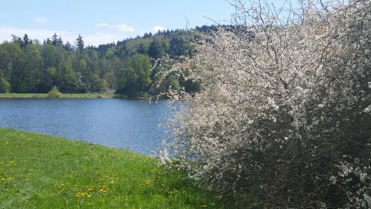 Ilustrační obrázek, voda na venkově, foto redakce